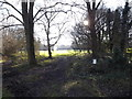 TL1312 : Path onto East Common off Cravells Road by Adrian Cable