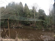NZ2486 : Suspension bridge crossing the River Wansbeck by Graham Robson