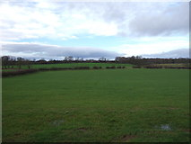 NZ2320 : Grassland west of Walworth Road by JThomas