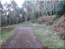 J3829 : Forest road junction on the former Drinneevar Loop by Eric Jones