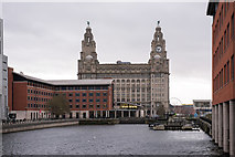 SJ3390 : Royal Liver Building from Princes Dock (1) by The Carlisle Kid