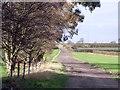SK3429 : Track to Arleston by Ian Calderwood
