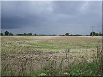 TM0960 : Farmland near Jockey's Farm by JThomas