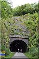 SK1871 : Headstone Tunnel, western portal by N Chadwick