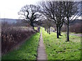 SK4921 : Concrete footway by Shepshed Road by Ian Calderwood