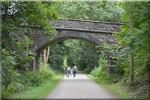 SK1971 : Access bridge, Monsal Trail by N Chadwick