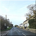 TL6270 : B1102 Market Street, Fordham by Adrian Cable
