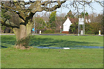 SU9946 : Peasmarsh Green by Alan Hunt