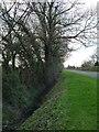 SE5034 : Drain on the east side of Fenton Lane by Christine Johnstone