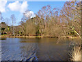 SU7736 : Shortheath Pond by Robin Webster