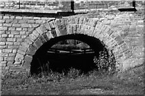 TL1351 : Flood arch, Great Barford bridge by John Winder