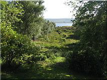 NC5314 : Loch Shin from Shinness Lodge by M J Richardson