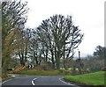 SN0934 : Lane Junction To Trehaidd by Deborah Tilley