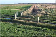 TG0345 : Drainage channel, Blakeney Fresh Marshes by Derek Harper