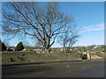 TQ5175 : Looking across to the churchyard of St Paulinus, Crayford by Marathon