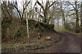 TQ2729 : Track climbing past Woodlands Cottage, Nymans Woods by Christopher Hilton