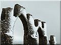 NH6069 : Snow on the Fyrish Monument by John Allan