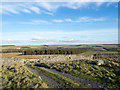 NZ0441 : Gate in dry stone wall by Trevor Littlewood