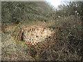 TM1879 : Brickwork in disused sedimentation tank by Evelyn Simak