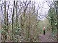 SO8294 : Path Scene by Gordon Griffiths