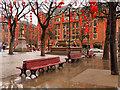 SJ8398 : Red Lanterns in Albert Square by David Dixon