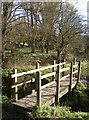 ST6566 : Wooden footbridge by Neil Owen