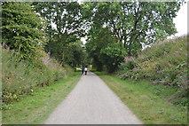 SK2169 : The Monsal Trail by N Chadwick