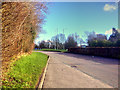 SD4905 : Gillibrands Road by David Dixon