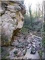 NZ4445 : Cliff in Hawthorn Dene by Oliver Dixon