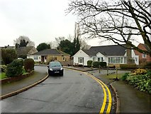 TQ8833 : Rothley Close, Tenterden by Chris Whippet