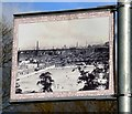 SJ8889 : Edgeley Lamppost: Hollywood Park by Gerald England