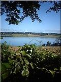 SH5066 : Golygfa tuag at Frynsiencyn o Blas Llanfair - View towards Brynsiecyn from Plas Llanfair by James Whittaker