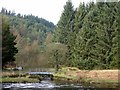 SD7017 : Footbridge over a feeder stream by Philip Platt