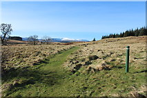 NX5987 : Path to Polmaddy Historic Settlement by Billy McCrorie