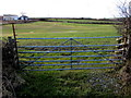 SM9311 : Field gate north of Johnston by Jaggery