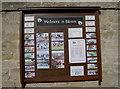 ST4347 : Wedmore in bloom by Neil Owen