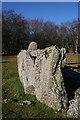 NJ7428 : Loanhead of Daviot Recumbent Stone Circle (10) by Anne Burgess