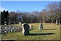 NJ7428 : Loanhead of Daviot Recumbent Stone Circle (17) by Anne Burgess