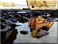 SY0984 : Rockpools, Smallstones Point by Nigel Mykura