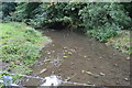 SK2164 : River Bradford by N Chadwick
