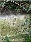 SK9202 : Rivet bench mark, railway bridge, North Luffenham by Alan Murray-Rust