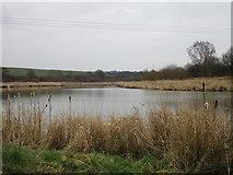 SK4995 : Firsby Reservoir by Jonathan Thacker