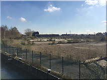 TL1998 : Cleared land on the south bank of the River Nene, Peterborough by Robin Stott