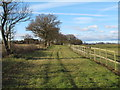 TL7201 : Footpath near Paddock, Galleywood \ West Hanningfield by Roger Jones