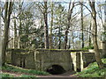 TF9336 : The Dell Gate at Walsingham Abbey, Norfolk by Richard Humphrey