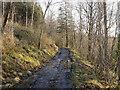 H3907 : Track near Cavan by Rossographer