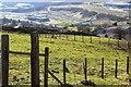 SO1708 : Ebbw Fach Learning Community (Primary), Ebbw Vale by M J Roscoe
