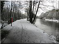 H4772 : Snow along the Highway to Health Path by Kenneth  Allen