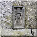 H7538 : Flush Bracket, Middletown by Rossographer