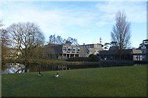 SE6250 : Lake and Derwent College Nucleus by DS Pugh